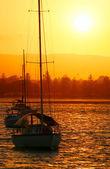 Yachts dans le soleil — Photo