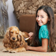 The girl is combing the dog — Stock Photo #12392424