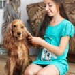 The girl is combing the dog — Stock Photo