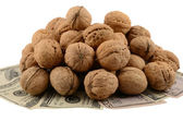 Mountain of nuts — Stock Photo