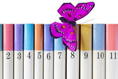 Books with a Silk Butterfly — Stock Photo