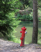 Hydrant by the Pond — Stock Photo