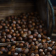 Stock Photo: Hazelnuts in Wooden Box Poured Out onto Oak Table