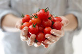 Cherry Tomatoes in Womans Hands — Stock Photo