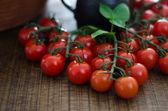 Cherry Tomatoes on Stalks — Stock Photo