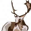 Deer vector illustration — Stock Vector