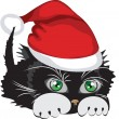 Kitten wearing a Santa Claus hat over white background — Stock Vector