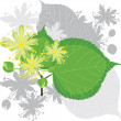 Blooming linden branch — Stock Vector