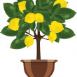 Stock Vector: Lemon tree in a flowerpot vector illustration