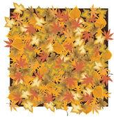 Dry leaves — Stock Vector