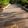 Disabled Pathway — Stock Photo