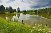 Landscape lake — Stockfoto