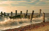 Old Sea Defences — Stock Photo
