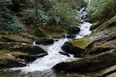 Cachoeira em montes apalaches — Foto Stock