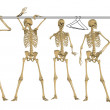 Skeletons in the Closet - Stock Photo