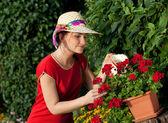 Young gardener woman watering plants — Stock Photo