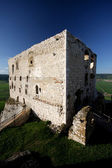 Spissky hrad - castle — Stock Photo
