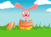 Easter rabbit and egg — Stock Photo