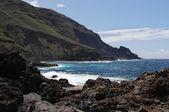 La costa dell'isola di la palma — Foto Stock