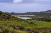 The meadows of the Cabo de Gata national park — Zdjęcie stockowe