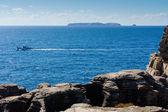 Widok wyspy berlenga — Zdjęcie stockowe