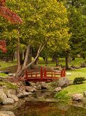 Oriental style garden — Stock Photo