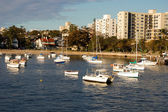 Manly Cove — Stock Photo