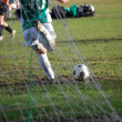 Stock Photo: Goal kick