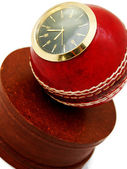 Dags att spela cricket — Stockfoto
