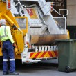 Garbage truck driver - Photo