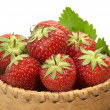 Strawberry in bark basket - 2 — Stock Photo