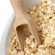 Seeds of oats — Stock Photo