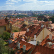 Prague roofs — Stock Photo #11812666