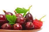 Vino rosso uva spina e il lampone — Foto Stock