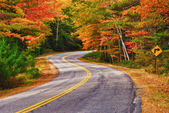 Winding Autumn Road — Foto Stock
