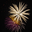 Fireworks celebration — Stock Photo #11991947