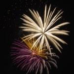 Fireworks celebration — Stock Photo