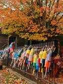 Lobster buoys in autumn — Stock Photo