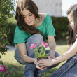 Stock Photo: Young beautiful mother planting some flowers with her daughter