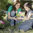 Young beautiful mother plating some flowers with her daughter — Stock Photo #11420506