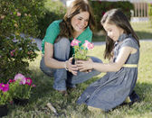 Young beautiful mother plating some flowers with her daughter — Stock Photo
