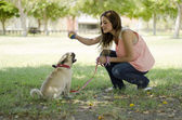 Cute girl playing ball with her dog — Stock Photo