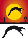 Silhouette diving — Stock Photo