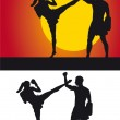 Kickboxer silhouette against a colored background — Stock Photo #11796263