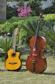 Cello and guitar — Foto de Stock