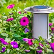 A solar-powered garden lamp - these save electricity and are ver — Stock Photo