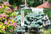 Modern stylish outdoor thermometer in the garden — Stok fotoğraf