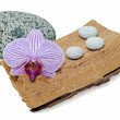 Still life with orchid and stones on a grunge wood — Stock Photo