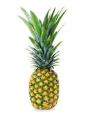Ripe whole pineapple isolated on white background — Stock Photo