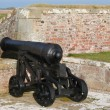 Antique cannon - Foto de Stock  